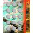 Альбом для монет Приднестровья на 30 ячеек для 25 рублей