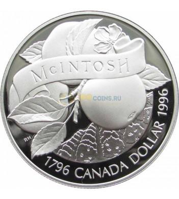 Канада 1996 1 доллар Яблоки Мекинтош proof